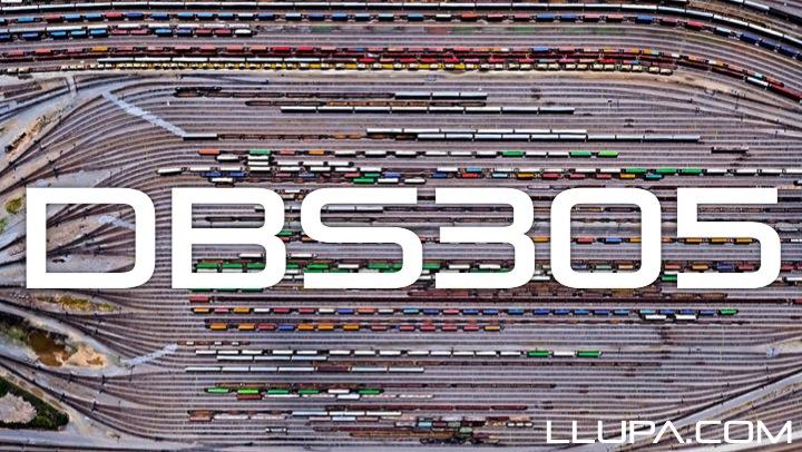 DBS305