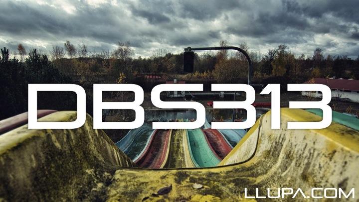 DBS313