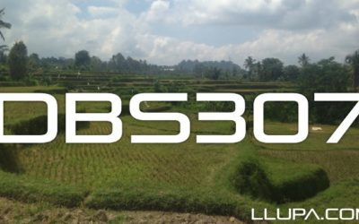 Disc Breaks with Llupa – 307 – 18th September 2014