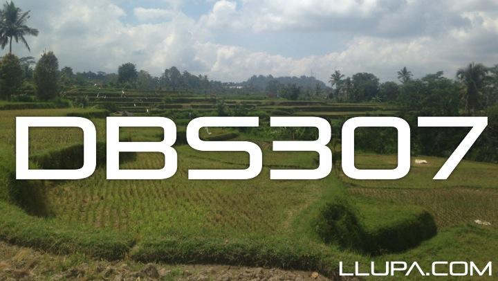DBS307
