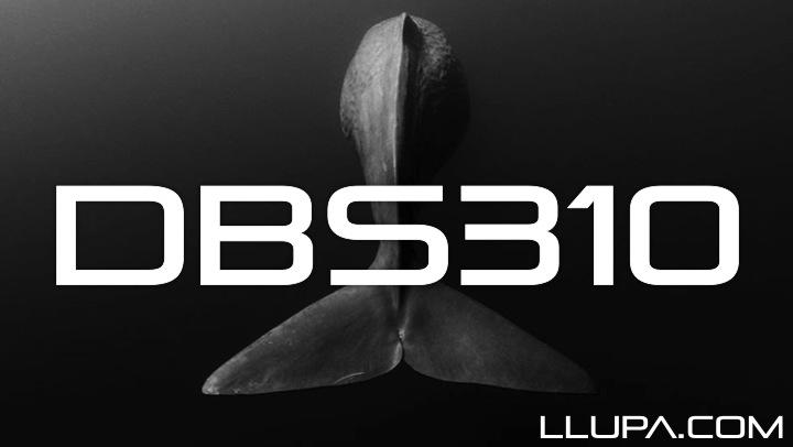 DBS310
