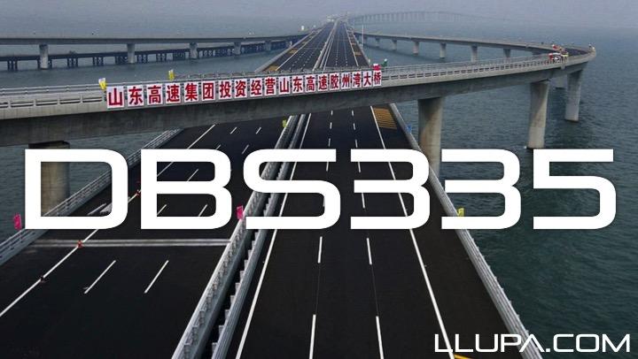 DBS335